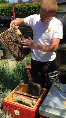Petr Malý with his bees