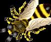 purepng.com-beebeefryhornethumble-beehon
