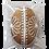 Thumbnail: Vajíčko