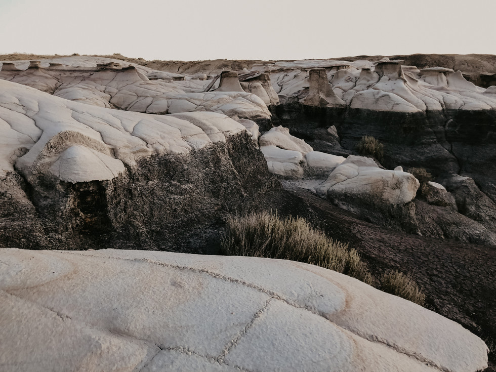 elopement photographer in new mexico