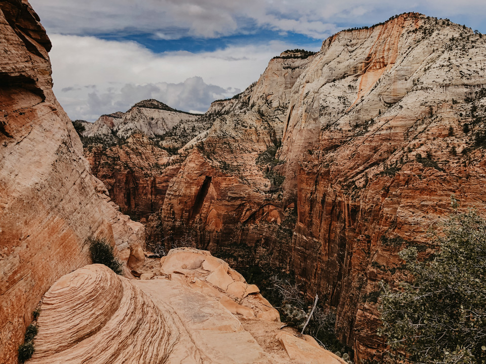 zion national park travel photography