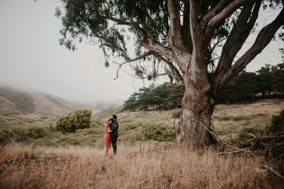 marin headlands california fog