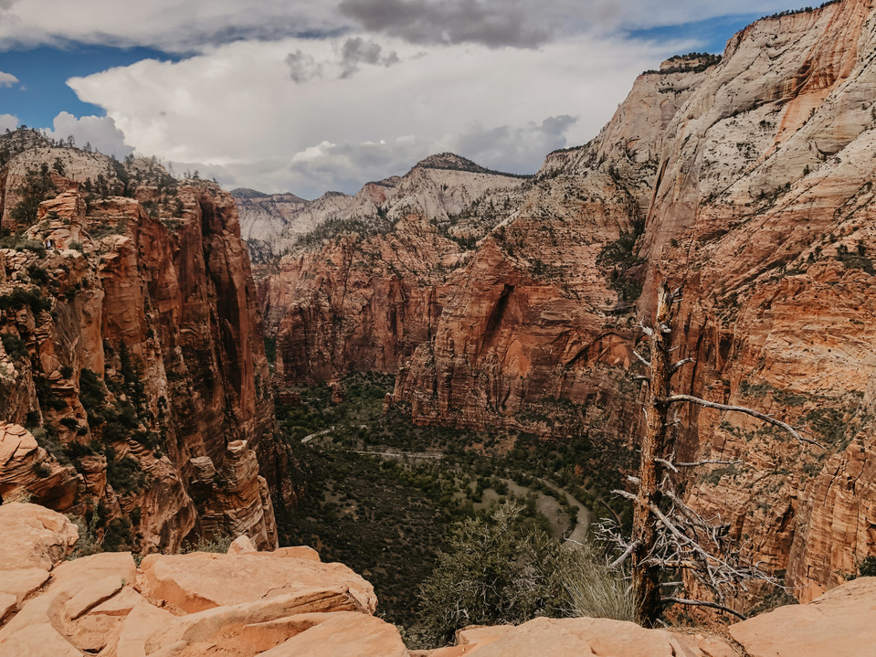 zion national park travel photographer