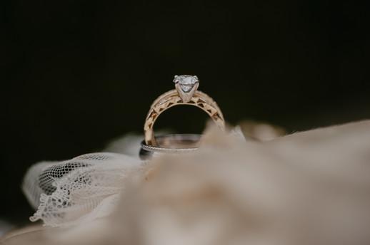 planterra conservatory wedding photographer michigan