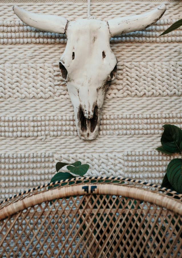 southwest skull peacock chair
