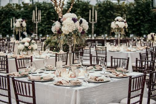 planterra conservatory elopement photographer