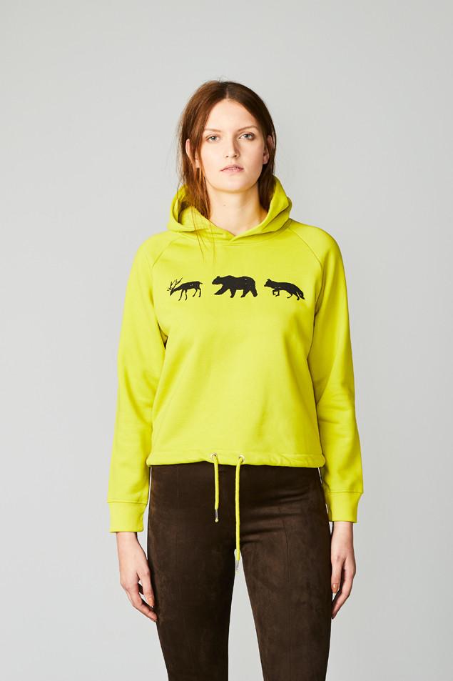Animal Line Hay Yellow