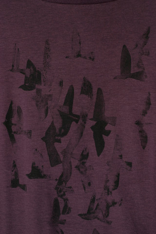 38190 - Cyano Flock Eggplant