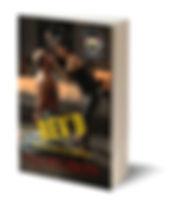 3D-Book-Rev'd.jpg