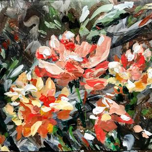 #floweraday15