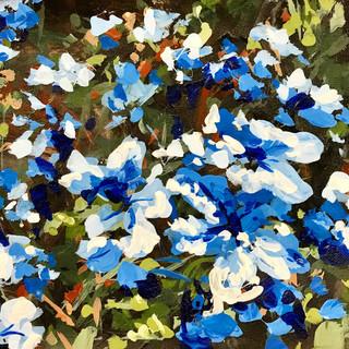 #floweraday21
