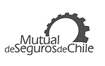 mutual-de-seguros.png