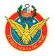 fuerza-aerea.png