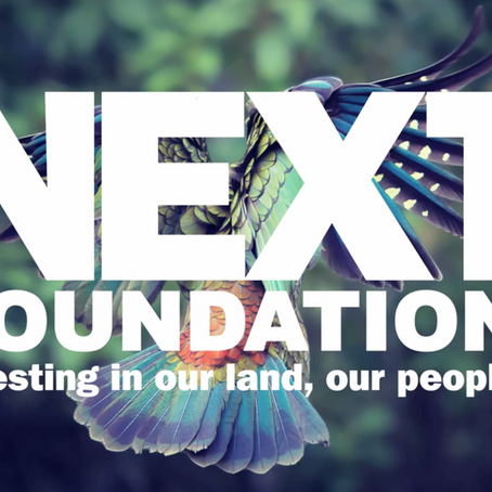 Next Foundation and Film Construction look to the future