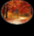 Logo Isabelle 2.png