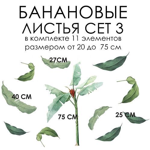 Стикеры БАНАНОВЫЕ ЛИСТЬЯ СЕТ 3