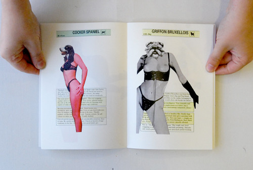 Pocket Guide to Bitches