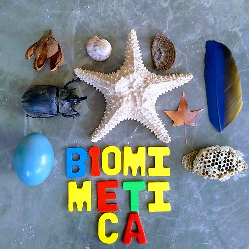 A PARTIR DE 10 ANOS: Biomimética para crianças - 3 X R$ 83,30