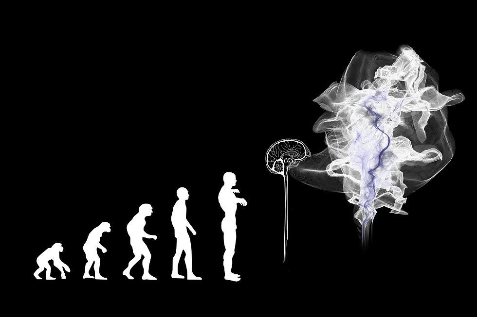 evolution-3885331.jpg