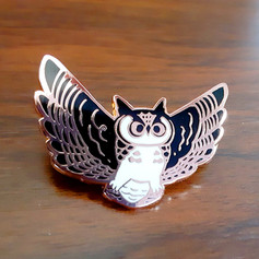 flyingOwl01.jpg