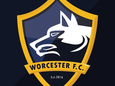 Worcester Futsal Club Launches New Website!