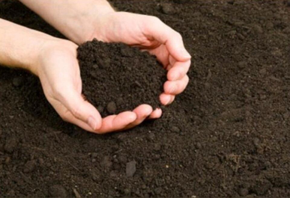 Top Soil   flowerbarn