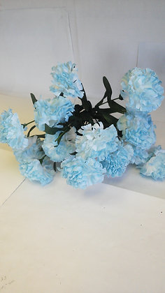 BLUE AND WHITE CARNATIONS