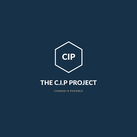 The CIP Project.PNG