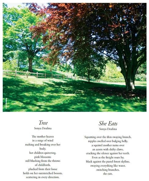 Sonya_Poetry1.png