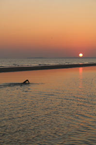 Swimming with the sunset