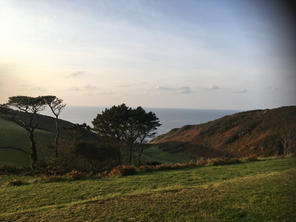 Green hills with trees, South Devon