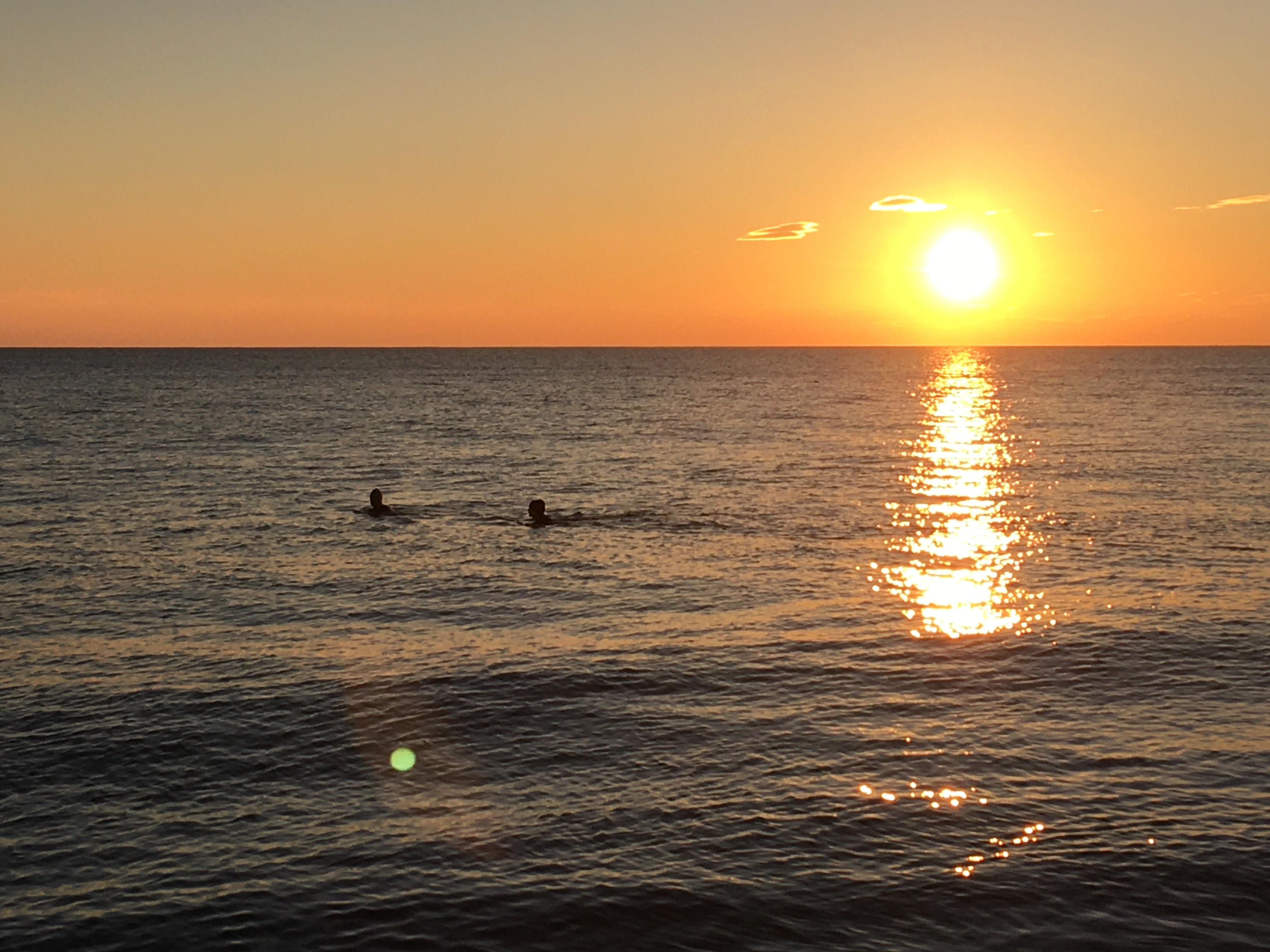 Intro to Sea Swimming: Summer Course