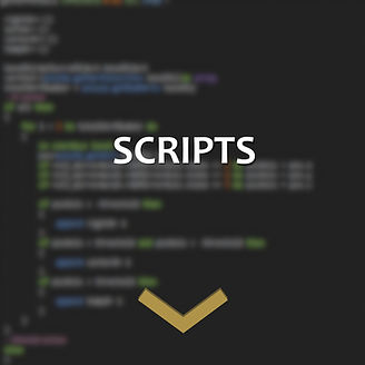 05_Scripts.jpg