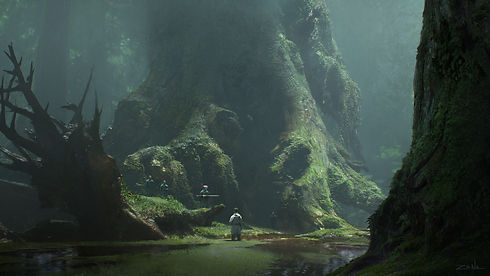eytan-zana-forest-5.jpg