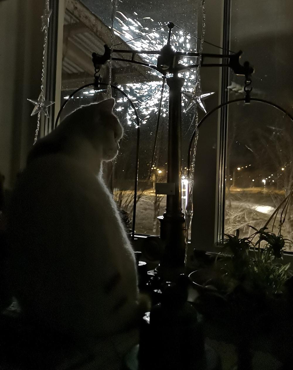 Snuttan Karlsson firar nyår