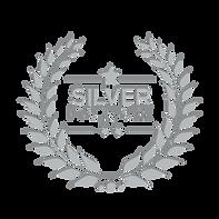 Silver_logo_Design_360x.png