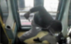 Защитник пассажиров антитеррористическая защита