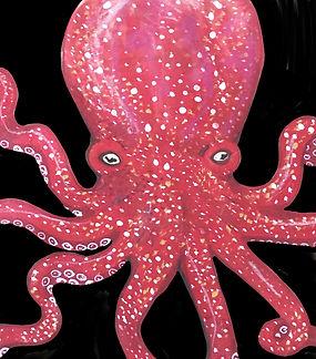 octopus red.jpg