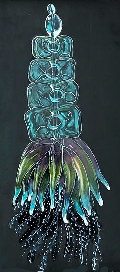 jellyfish .jpg