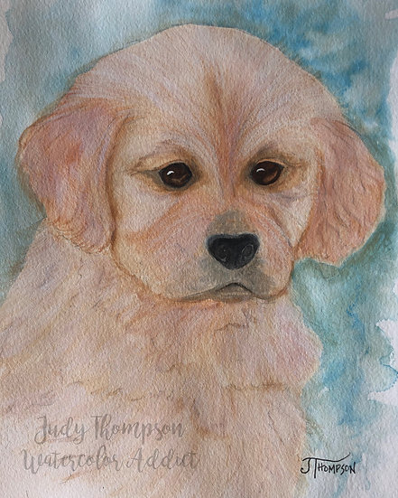 """Golden Retriever Puppy"""