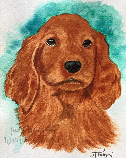 """Irish Setter Puppy"""
