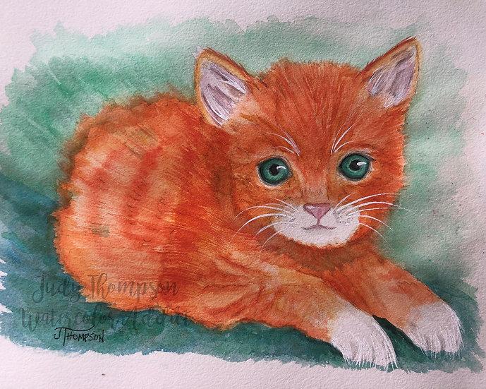 """Tabby Kitten"""