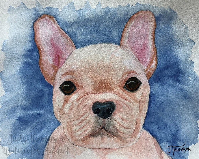 """French Bulldog Puppy"""