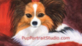 Business card, front side, for Judy Thompson's Pup Portrait Studio.  Click on image to enlarge picture.