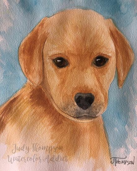 """Yellow Labrador Retriever Puppy"""