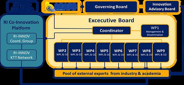 Management-Structure.png