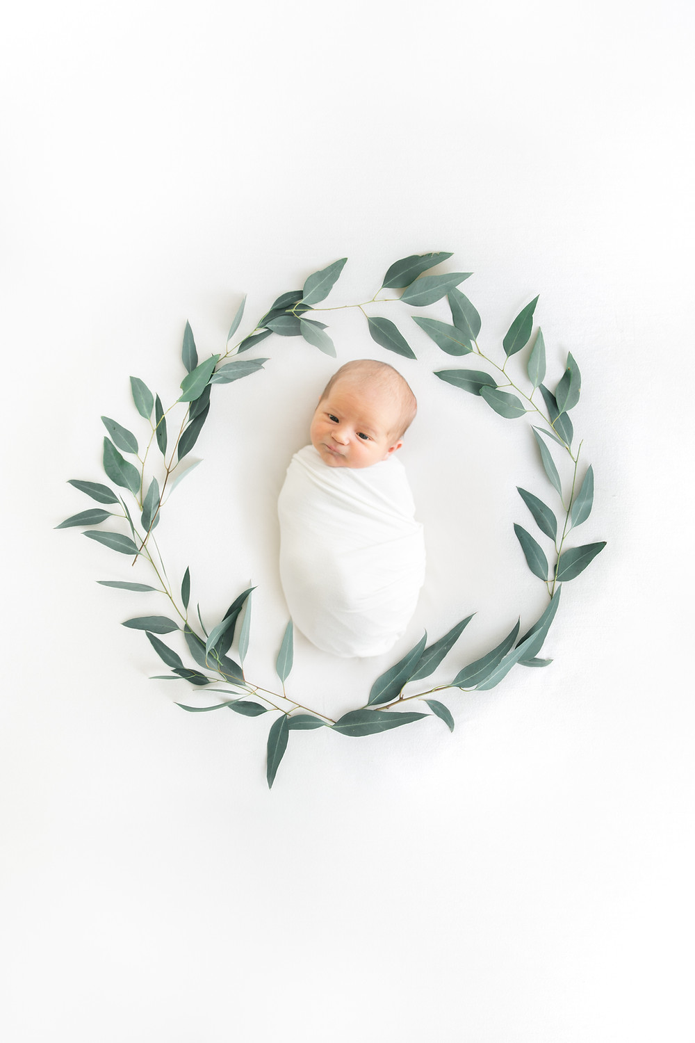 newborn photo with eucalyptus