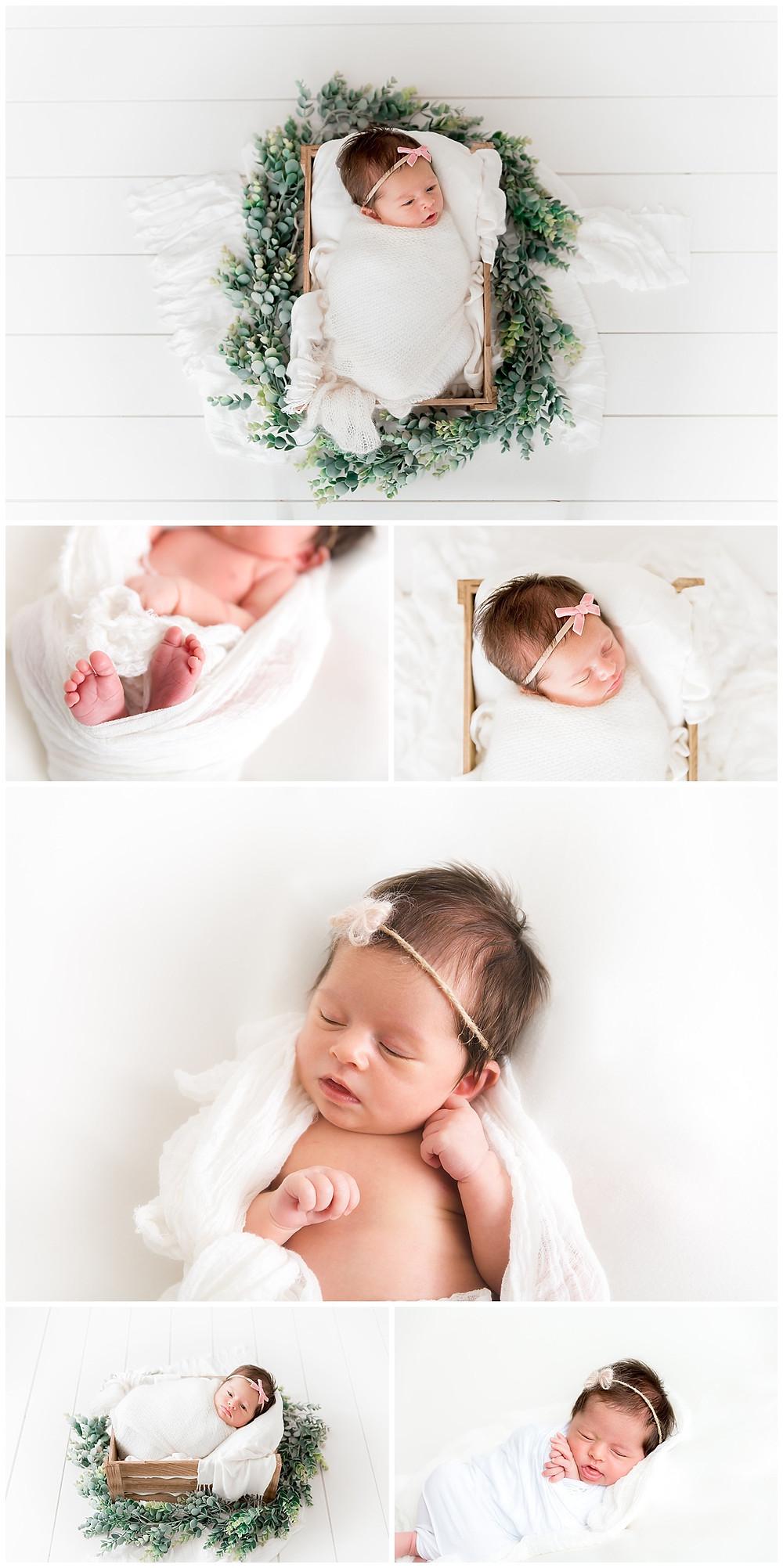 Greenery newborn photography Dallas