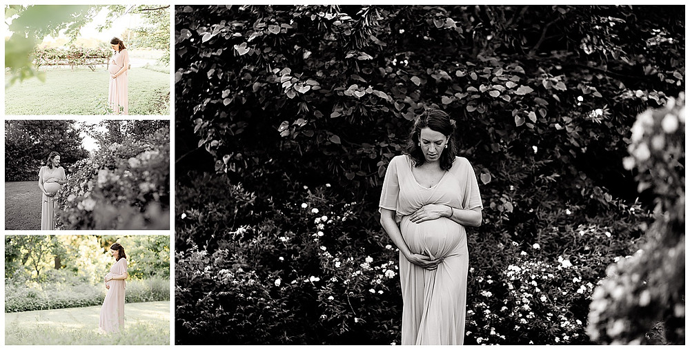 pregnancy pictures and photo session of maternity