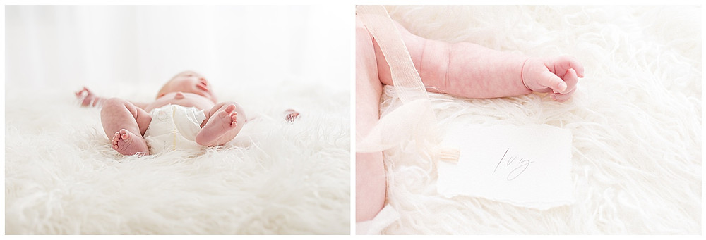 newborn portraits in Houston